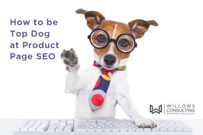 Product Page SEO Guide